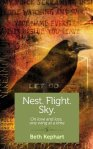 Nest. Flight.Sky.
